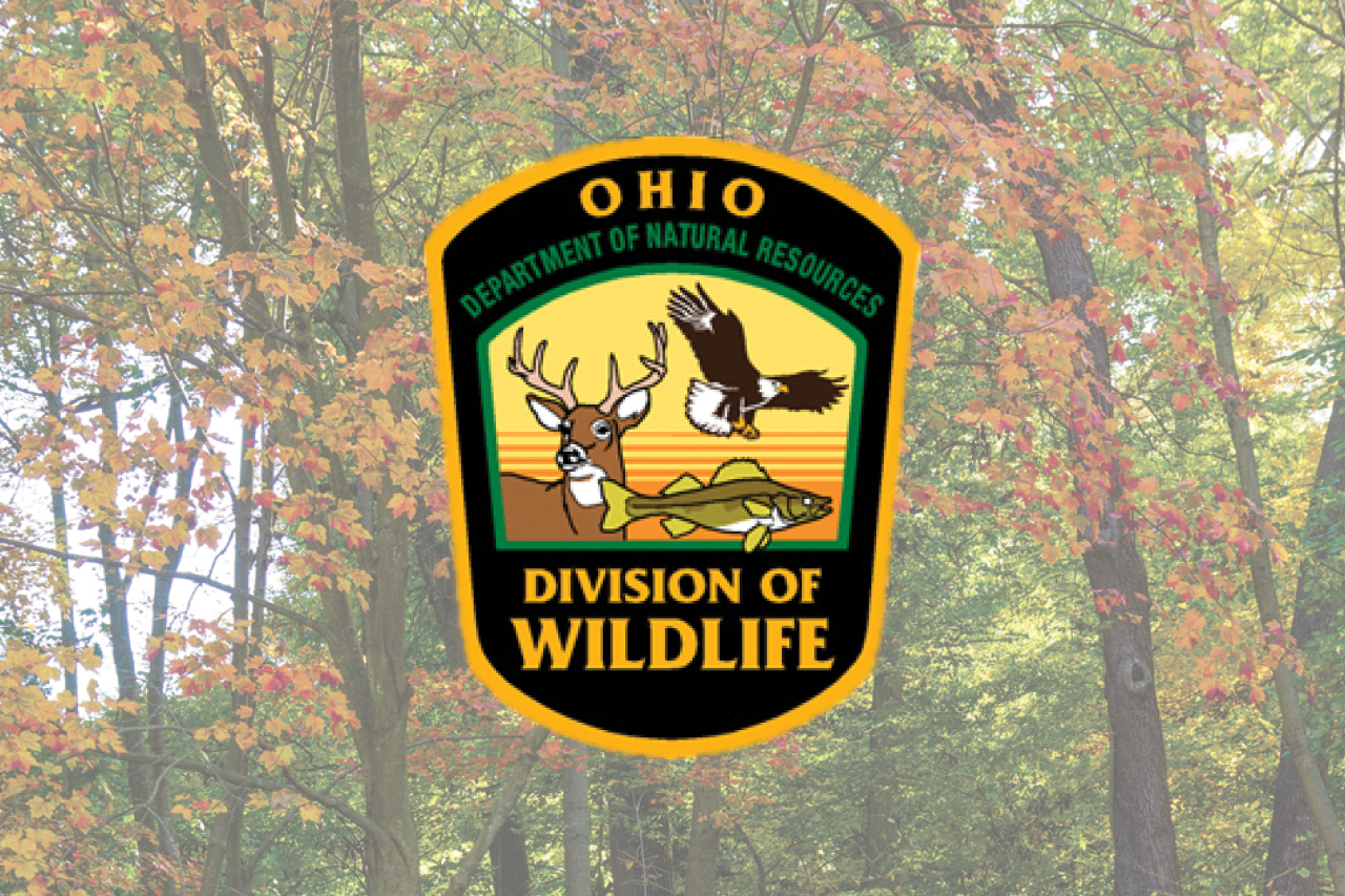 Ohio'S Upcoming Hunting Seasons Approved By Wildlife Council