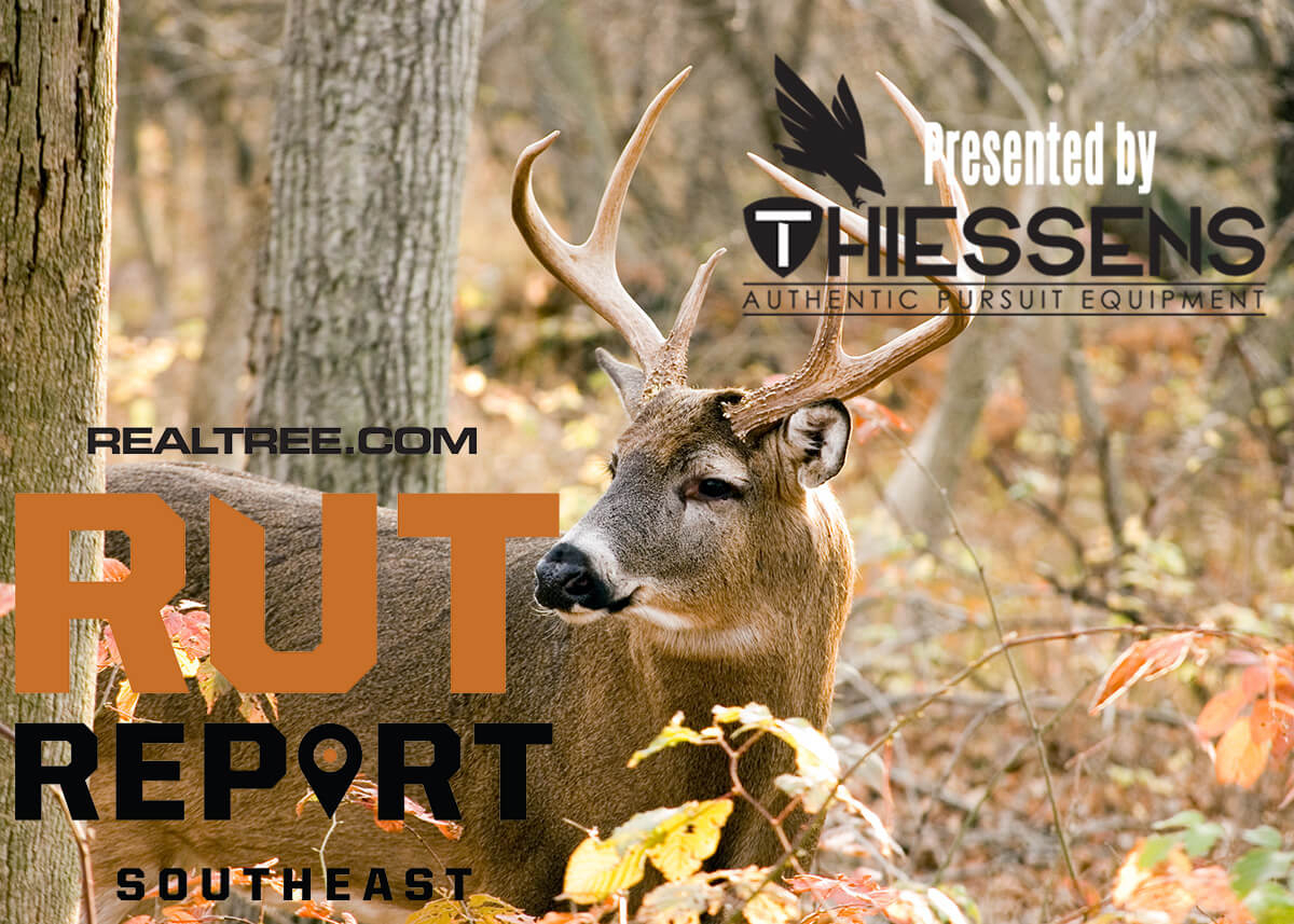 Southeast Rut Report: Post-Rut For Some, Red-Hot Action For