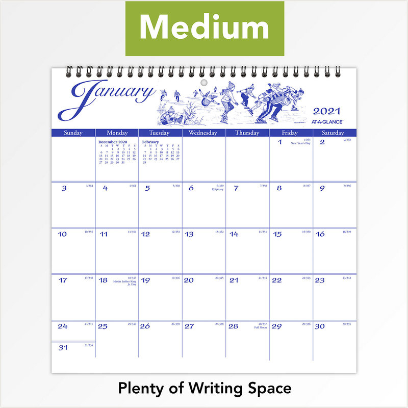 At-A-Glance 2021 G1000-17 Illustrated Monthly Wall