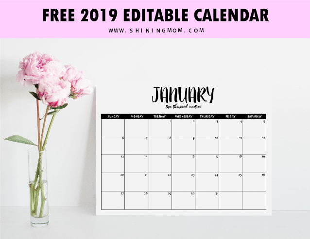 Free Fully Editable 2019 Calendar Template In Word | Free