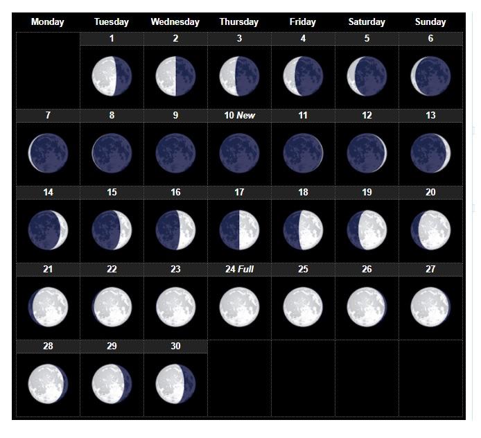 Lunar Calendar 2021 Free / Free 2021 Calendar With Lunar