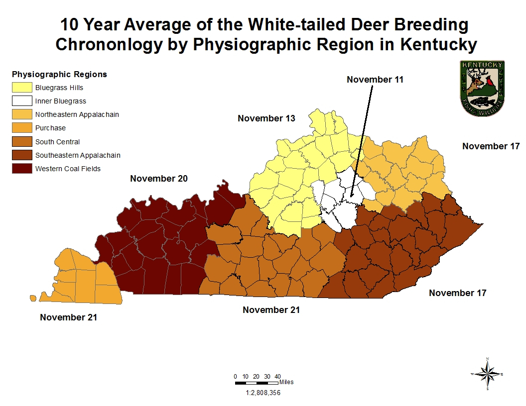 Pick Deer Rut Calendar | Calendar Printables Free Blank