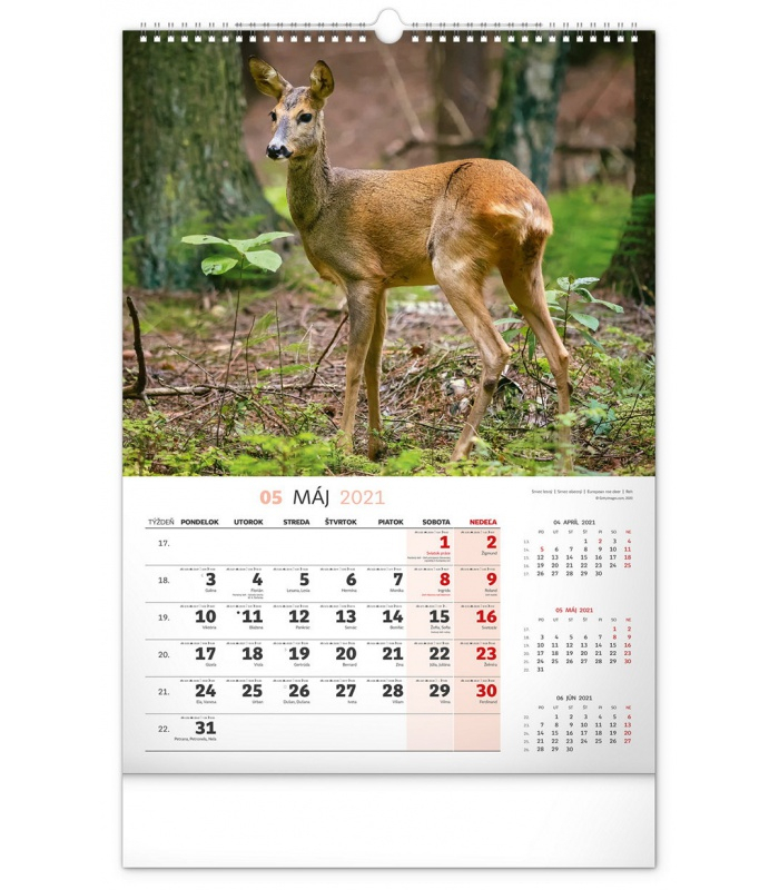 Wall Calendar Hunting Sk 2021